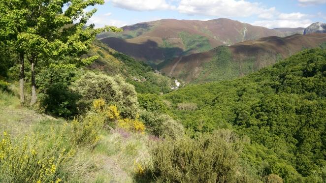 San Pedro de Montes